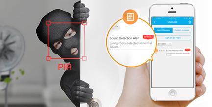 camera FN3104W Détection de mouvement et alertes mail / FTP